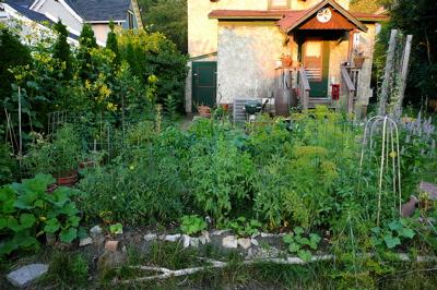 Garden0808