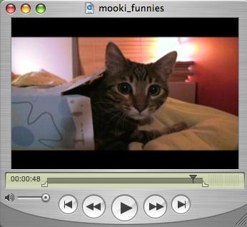 Mooki_funnies